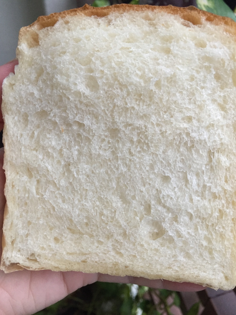 Plain White Toast (Softest Ever)